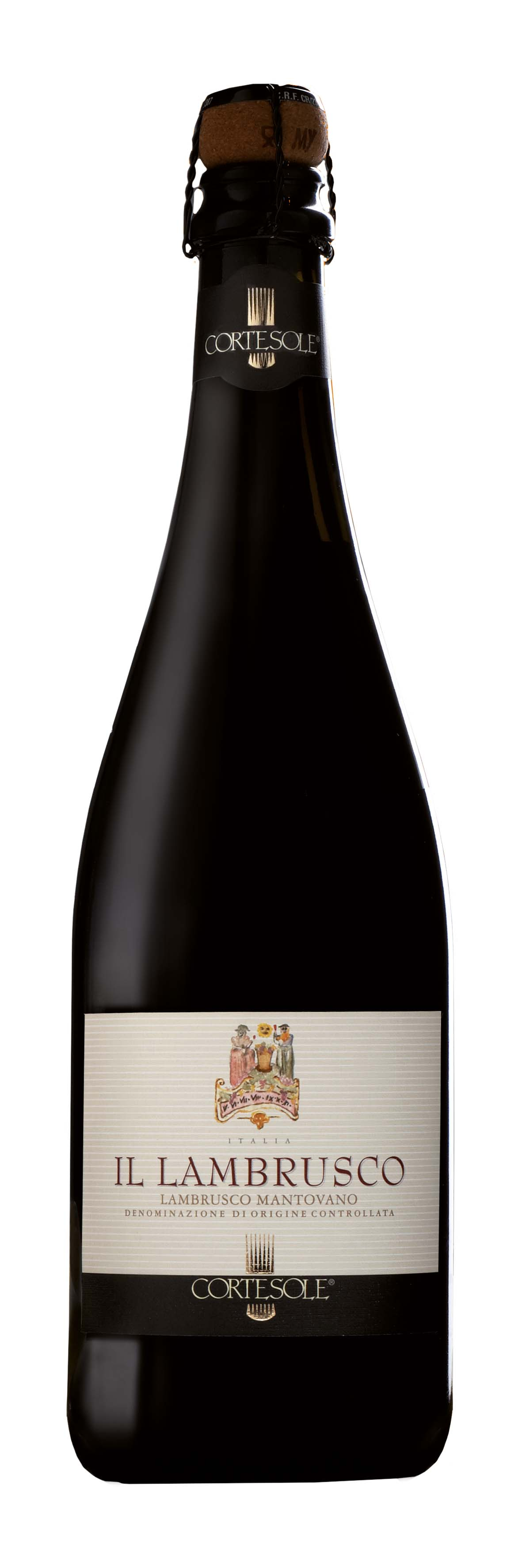 LAMBRUSCO copia