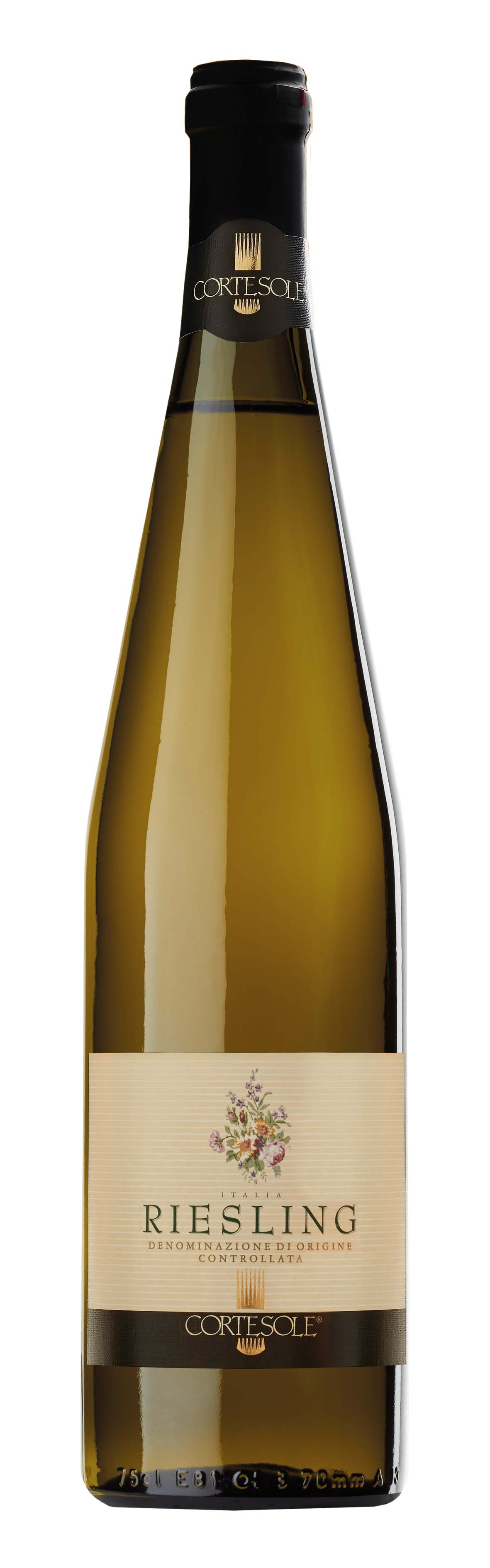 RIESLING copia
